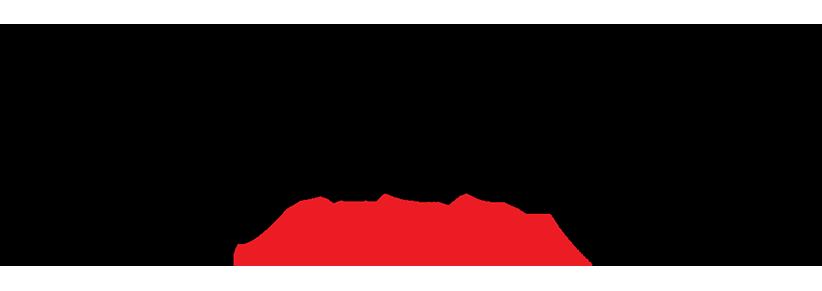 blauer-logo.png